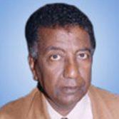 Dr. Ibrahim Elnur, American University in Cairo, Egypt